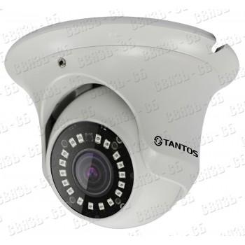 TSi-Ee50FP 5 мегапиксельная миниатюрная купольная уличная антивандальная камера с ИК подсветкой
