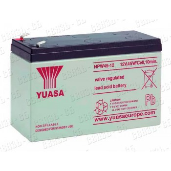 Аккумулятор Yuasa NPW45-12