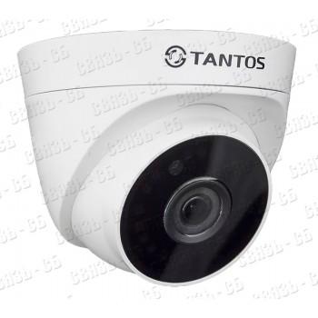 TSi-Eeco25FP (3.6) 2-х мегапиксельная IP -камера