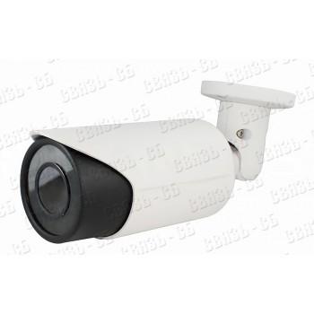 TSi-Pe25VP (5-50) 2 мегапиксельная уличная цилиндрическая камера с ИК подсветкой