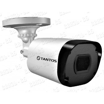 TSi-Peco25FP (3.6), 2 мегапиксельная уличная цилиндрическая камера с ИК подсветкой и фиксированным о