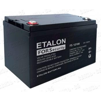 Аккумулятор FS 12100 (12В, 100А/ч)